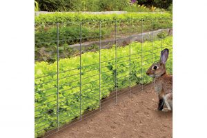 The 2 Best Rabbit Fences for Gardens Rabbit Guard Fence and Yardgard Rabbit Fence