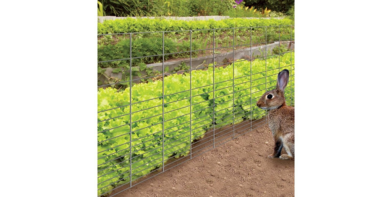 The 2 Best Rabbit Fences For Gardens: Rabbit Guard Fence And Yardgard  Rabbit Fence! | Rabbit Remover